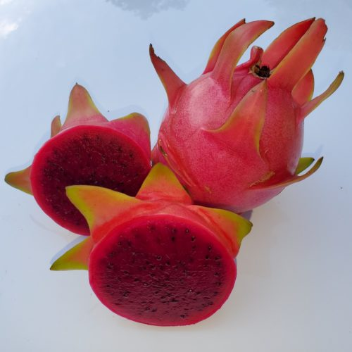 Sin Espinas Dragon Fruit sliced