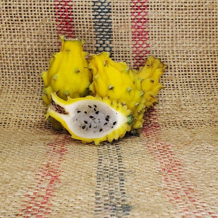 Yellow Dragon Fruit Spicy Exotics