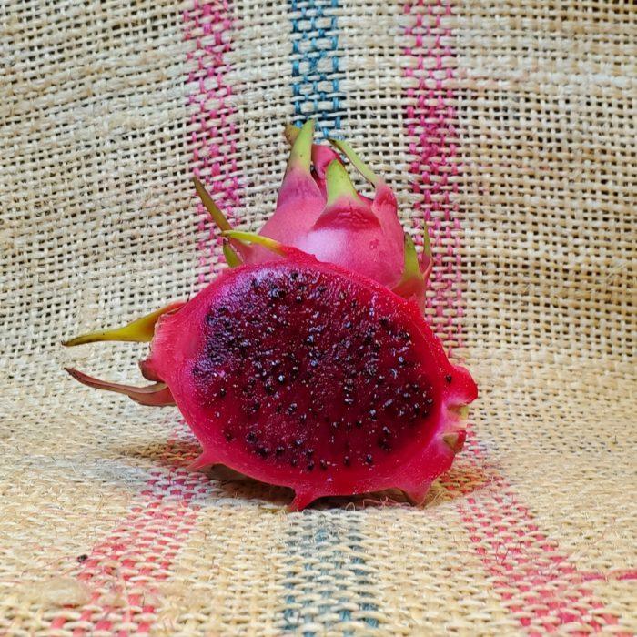 Wild Thing Dragon Fruit Spicy Exotics