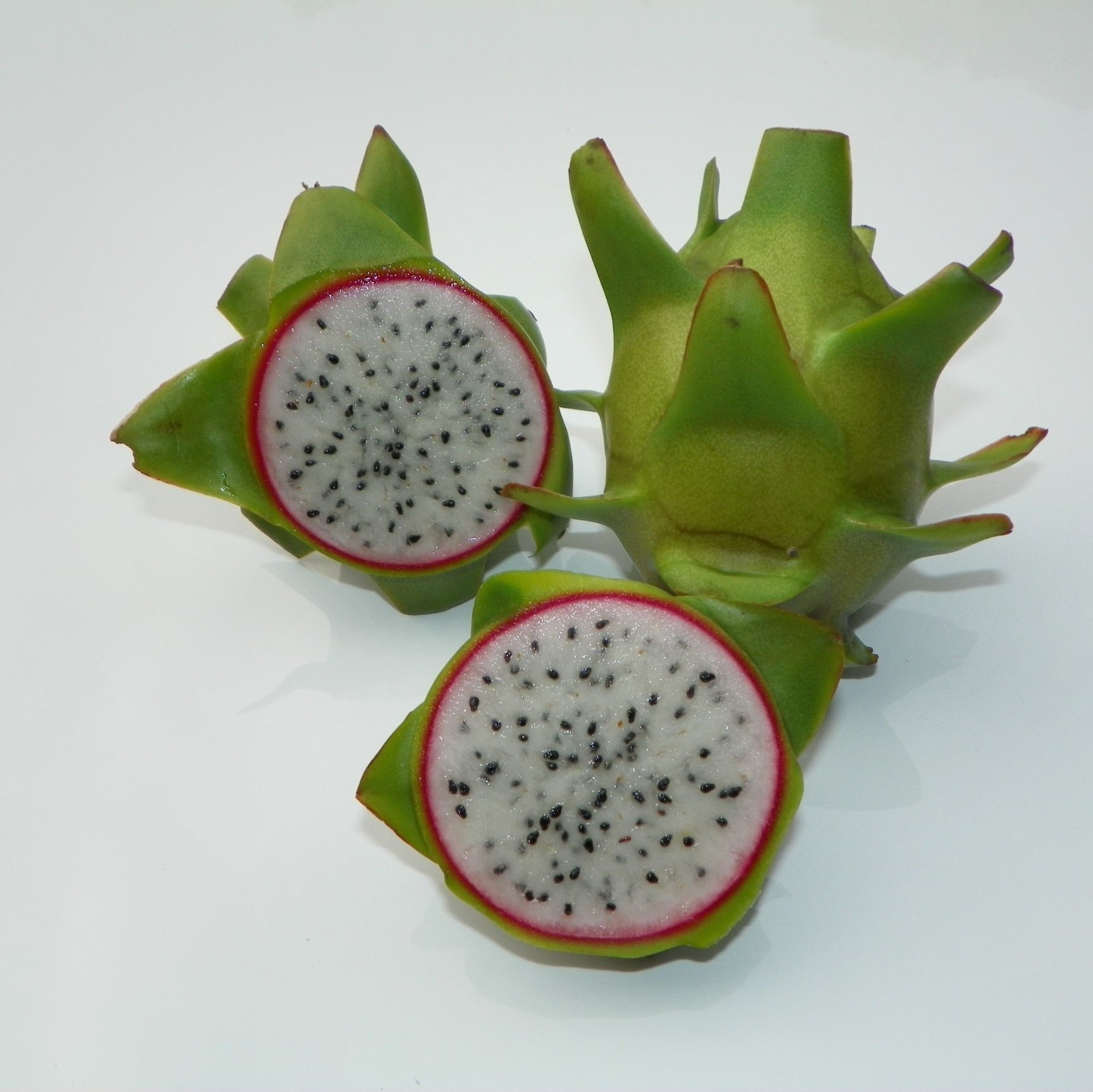 Connie Mayer Dragon Fruit Sliced