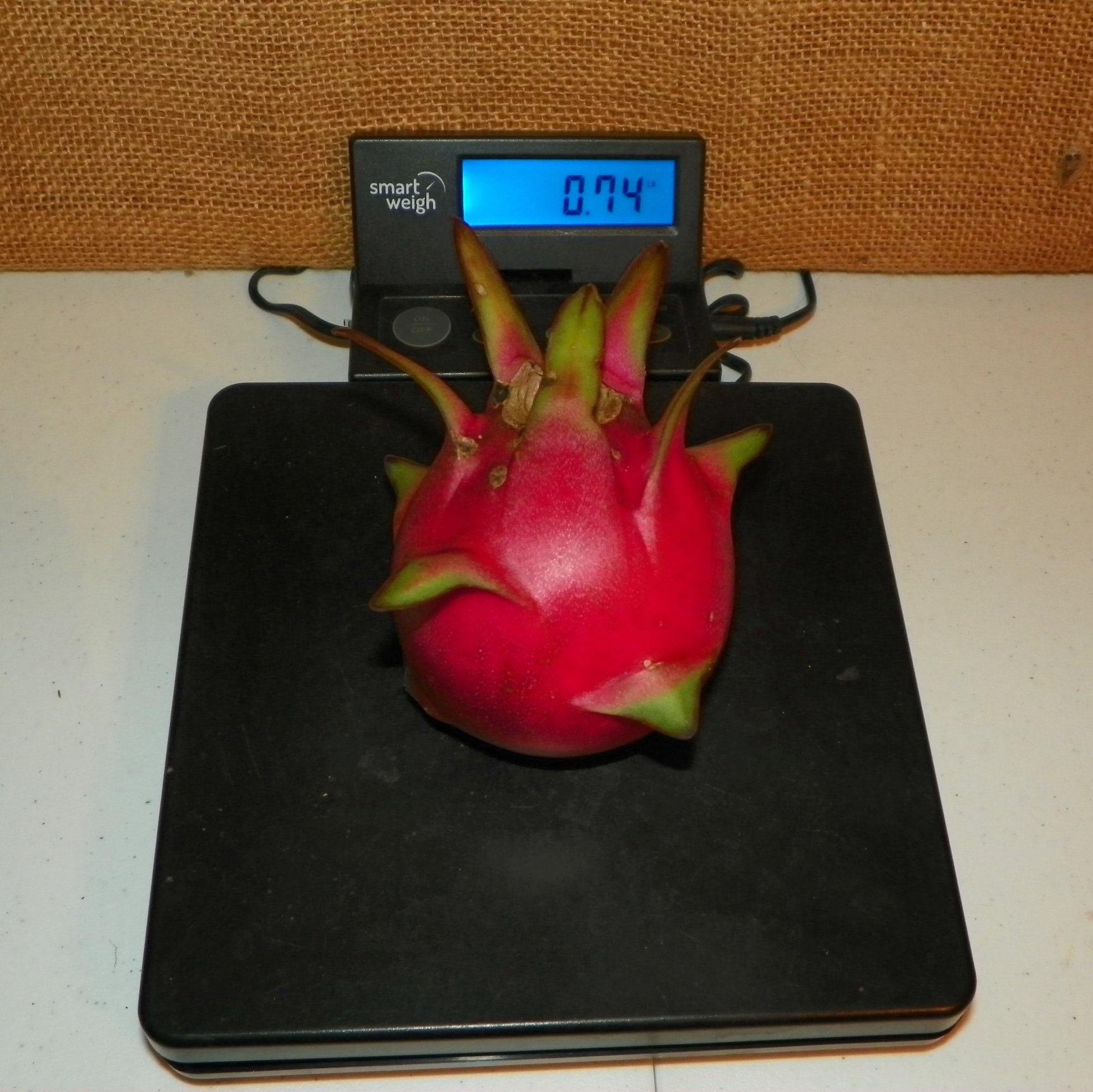 Country Roads Dragon Fruit Weight