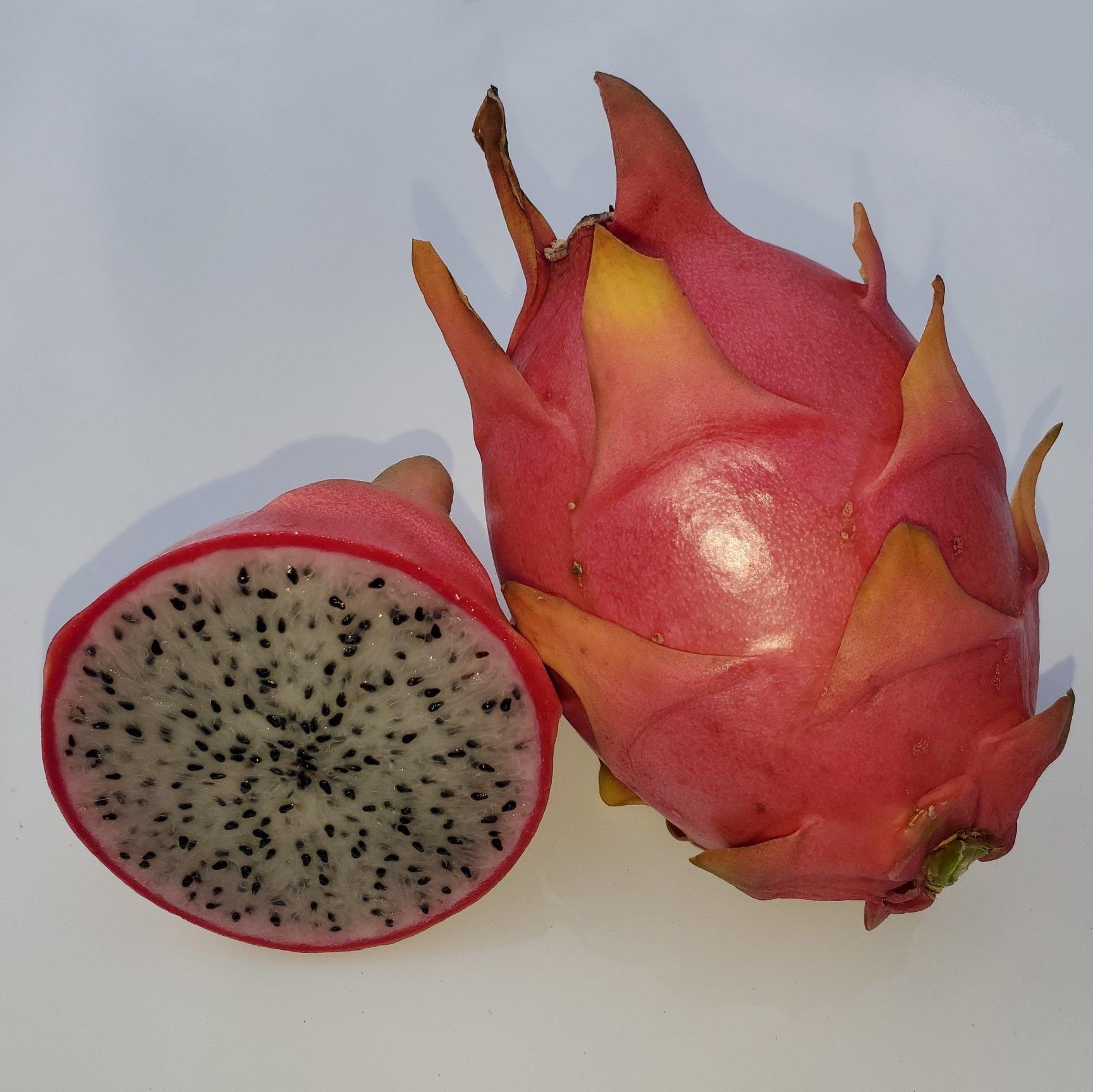 Capistrano Valley Dragon Fruit Sliced