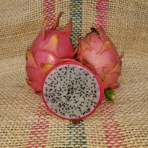 Capistrano Valley Dragon Fruit Spicy Exotics