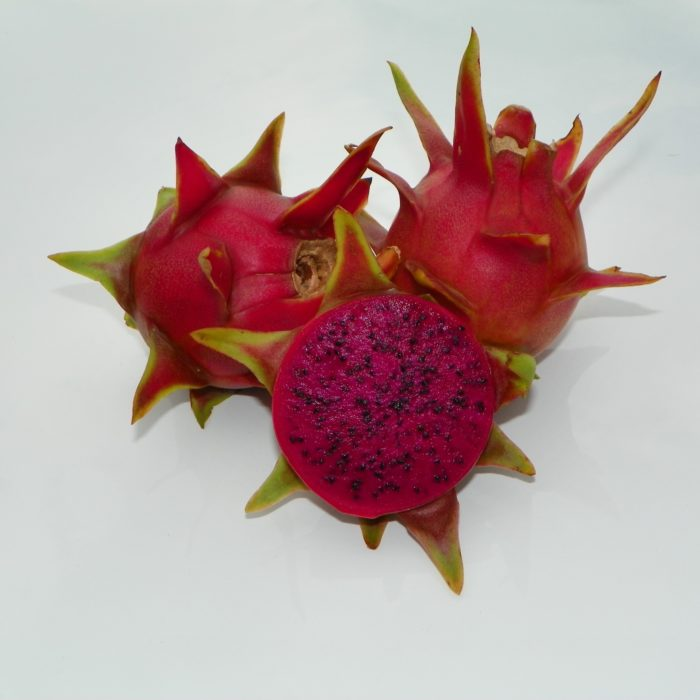Dragon Fruit variety Hylocereus guatemalensis fruit