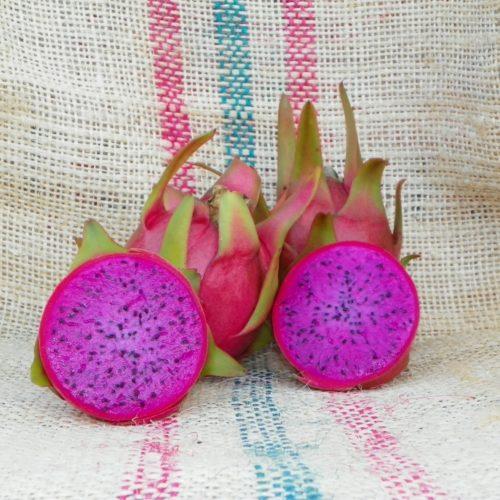 Dragon Fruit variety Halleys Comet fruit sliced