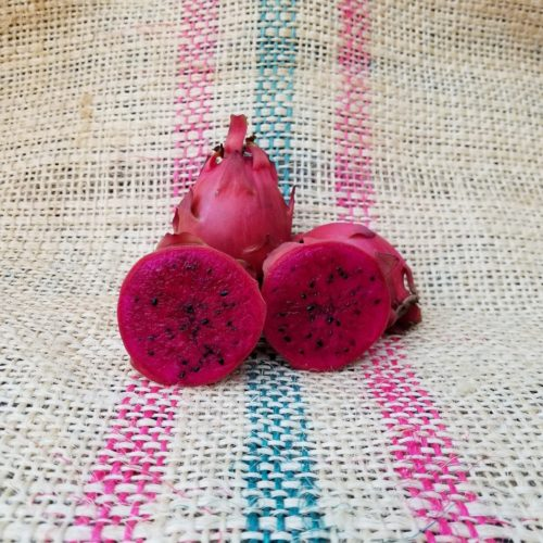Houghton Dragon Fruit Spicy Exotics