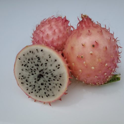 Selenicereus Hondurensis fruit sliced