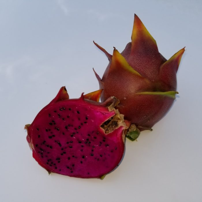 Paisley Dragon Fruit sliced