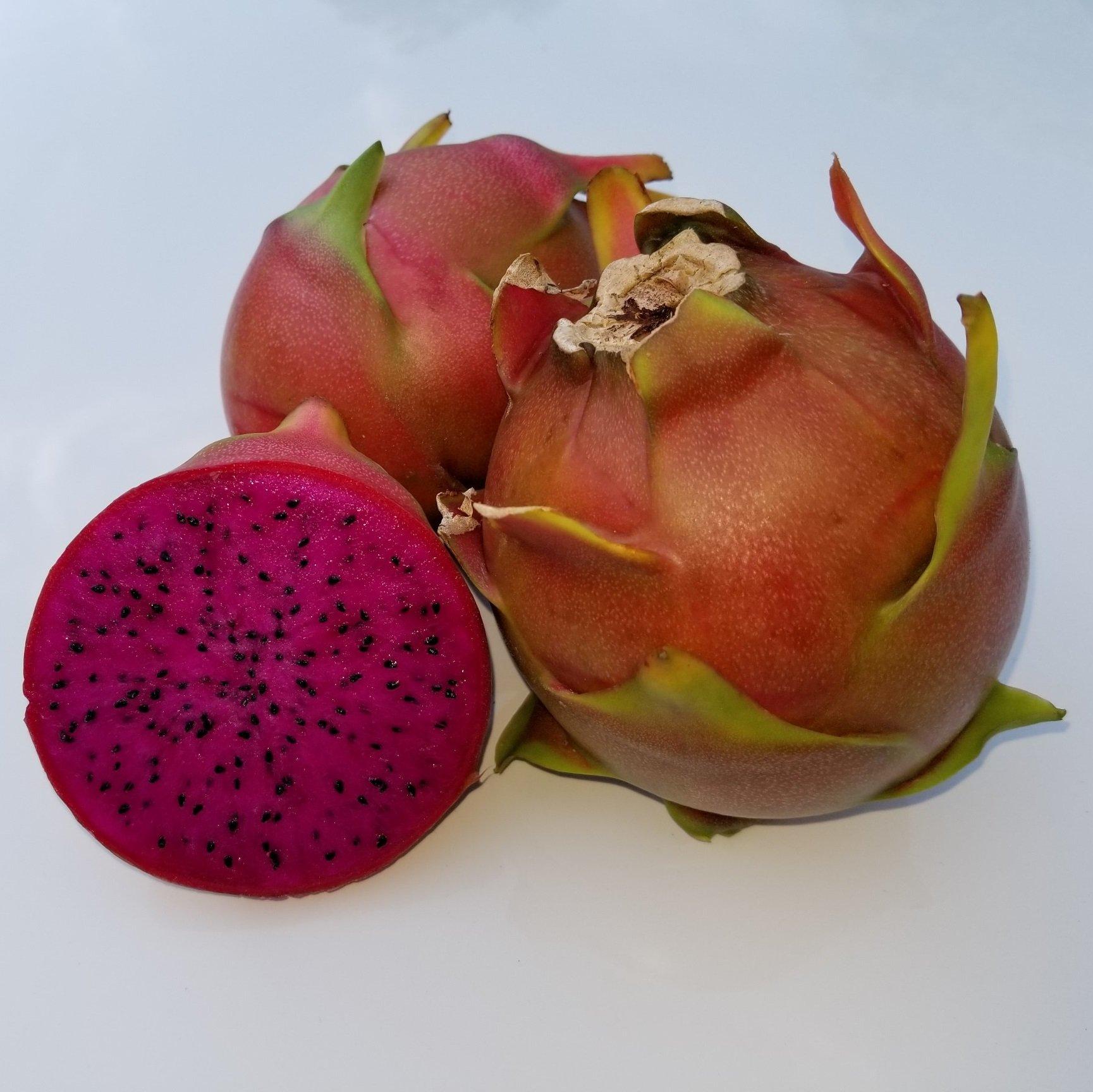 Shayna Dragon Fruit sliced