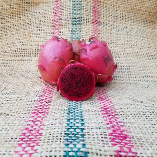 Valdivia Roja Dragon Fruit Spicy Exotics