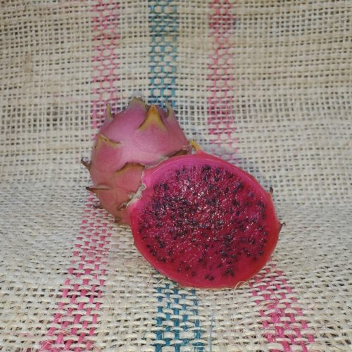 Vivid Purpurea Dragon Fruit Spicy Exotics