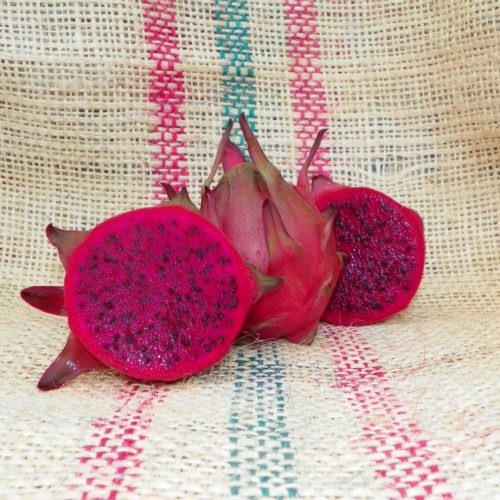 Dragon Fruit variety Zamorano fruit sliced